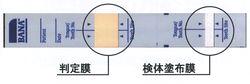 検体塗布膜と判定膜